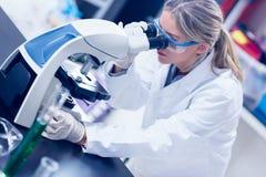Wetenschapsstudent die door microscoop in het laboratorium kijken Stock Afbeelding