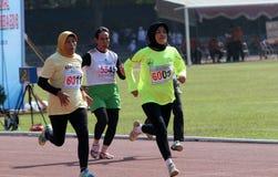 Weteran atlety Fotografia Stock