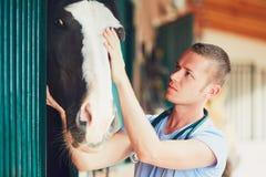 Weterynaryjna medycyna przy gospodarstwem rolnym obrazy royalty free