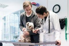 Weterynarz Egzamininuje psa W szpitalu zdjęcia stock