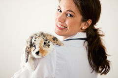Weterynarz: Trzymać zwierzę domowe królika Zdjęcia Stock