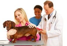 Weterynarz: Właściciel Trzyma zwierzę domowe psa na stole Fotografia Stock