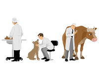 Weterynarzi z zwierzętami domowymi ustawiającymi Zdjęcie Stock