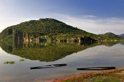 Wetland Stock Image