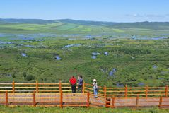 Wetland. The tourists visit the Genhe Wetland whick is the Asia first and nearby Hailaer City in the eastnorth of China royalty free stock photo