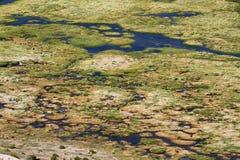 Wetland area in volcano isluga national park Royalty Free Stock Photography