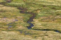 Wetland area in volcano isluga national park Royalty Free Stock Image