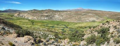 Wetland area in volcano isluga national park Royalty Free Stock Photos