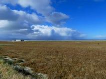 Wetland with blue sky. Swampy marshland by the coast at Miranda, New Zealand royalty free stock photo