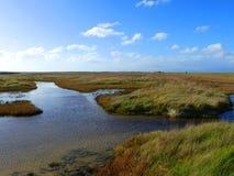 Wetland with blue sky. Swampy marshland by the coast at Miranda, New Zealand stock photography