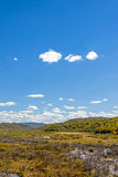 wetland and clouds in the autumn Royalty Free Stock Photos