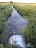 Wetland Ditch. Drainage ditch running through marshland Royalty Free Stock Photography