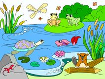Wetland landscape with animals color vector for adults. Wetland landscape with animals color book for adults vector illustration. Insect, frog, cane, dragonfly Royalty Free Stock Photos