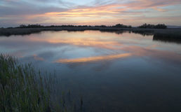 Wetland landscape Sunset. Stock Photography