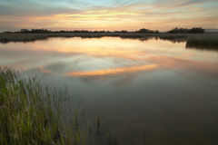 Wetland landscape in warm tone at sunset. Spain Stock Photos