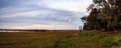 Wetland and marsh at the Myakka River State Park. In Sarasota, Florida, USA Stock Images