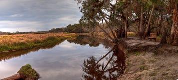 Wetland and marsh at the Myakka River State Park. In Sarasota, Florida, USA Royalty Free Stock Photography