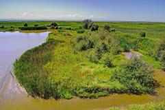 Wetland of a migratory bird sanctuary Royalty Free Stock Photos