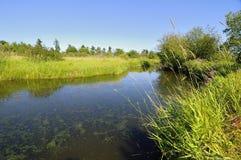 Wetland of a migratory bird sanctuary Stock Photo