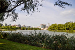 Wetland nature park in Beijing. This is a city wetland park in beijing of china Stock Photo
