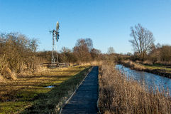 Wetland nature reserve Royalty Free Stock Photography