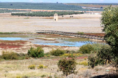 Wetland near Fuente de Piedra, Spain. In the north of Malaga province is the Laguna de Fuente de Piedra, the largest natural lake and wetland in the Iberian royalty free stock image
