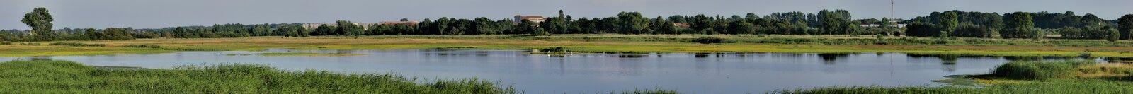 Wetland Panorama Royalty Free Stock Photos
