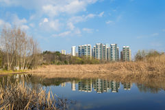 Wetland Park with residential area Stock Image