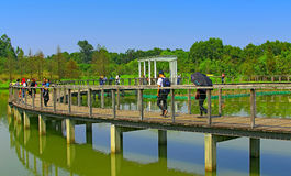 Wetland park walkway, hong kong Royalty Free Stock Image