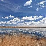 Wetland Reflections. Reflections of blue sky and clouds on wetlands Stock Photos