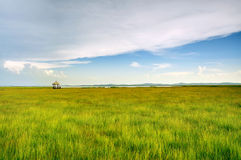 The wetland on the rest Pavilion Royalty Free Stock Images