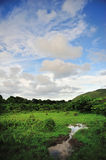 Wetland Sky. Wetland in Hong Kong. Usually cows will gether in here stock photography