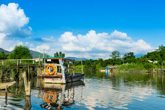 Wetland with sunny day Royalty Free Stock Photography