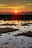 Wetland Sunset. Sunset on the wetland in Hong Kong stock photo