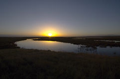 The wetland sunset Royalty Free Stock Photography
