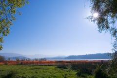 wetland sunshine Royalty Free Stock Photography