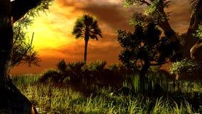 Wetland - swamp Royalty Free Stock Photo