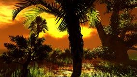 Wetland - swamp Stock Images