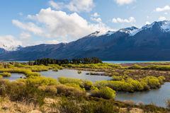 Wetland swamp in glacial Rees Dart river valley Stock Images