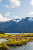 Wetland swamp in glacial Rees Dart river valley Royalty Free Stock Photos