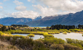 Wetland swamp in glacial Rees Dart river valley Stock Photography