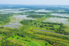 Wetland, top view. Re-waterlogged land, wetland, swamp, view from helicopter Stock Photo