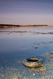 Wetland Tyre. Pollution in coastal wetlands, showing an abandoned tyre and rubbish in a coastal tidal lake Stock Photo