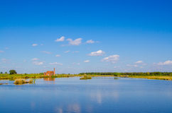 Wetland under blue sky Royalty Free Stock Photos
