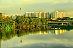 Wetland in Urban City Singapore Stock Images