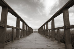 Wetland wooden pathway in sepia tone. Royalty Free Stock Photography