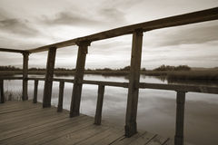 Wetland wooden viewpoint in sepia tone. Royalty Free Stock Photo