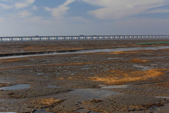 Wetland of the yellow gold seaweed, the longest bridge in the world by the hangzhou bay. Reflection in wetland with blue sky white cloud, is the longest bridge Royalty Free Stock Images