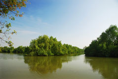 Wetlands. With long river and blue sky Royalty Free Stock Image