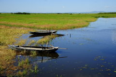 Wetlands. China's Inner Mongolia region of wetlands are well protected stock images